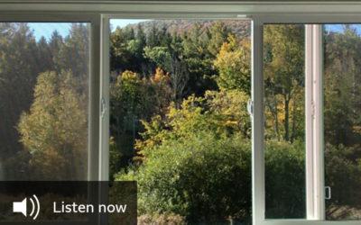 BBC Radio 4 «Windows»